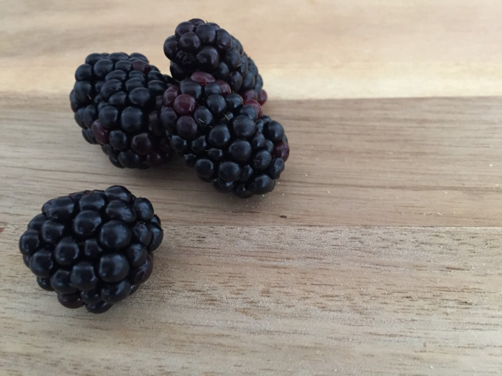 Superfood: Brombeere