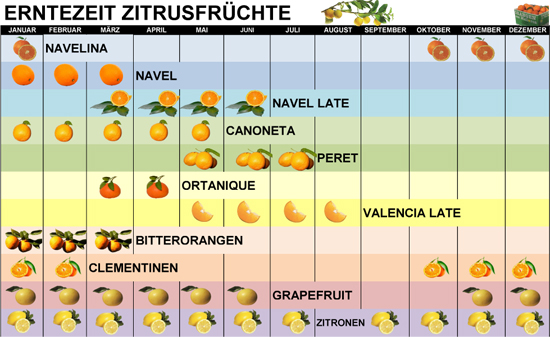 Erntekalender3