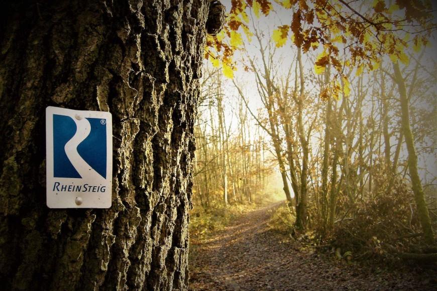 Trailrunning: Alles über Streckenplanung